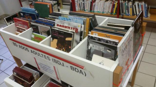 Bac BD ados adultes bibliothèque de Saillans