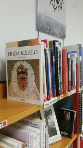 rayon bibliothèque de Saillans